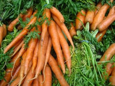 Carrots Falcorinol
