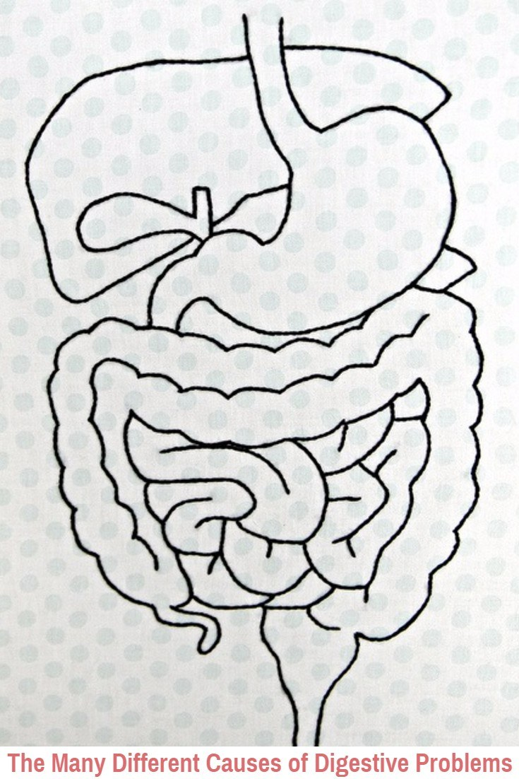 Causes-of-Digestive-Problems