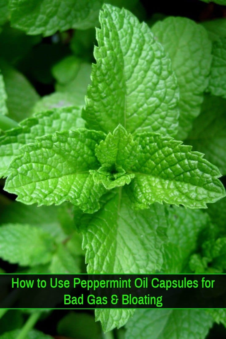 Peppermint-Oil-Capsules-for-Bloating-and-Bad-Gas