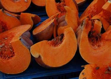 PumpkinSalad
