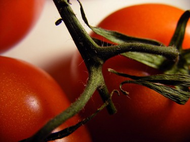 Benefits of lycopene